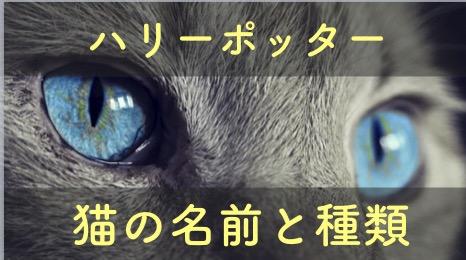 ハリーポッターに登場する猫の名前と種類